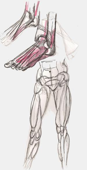 Aktzeichnungen - Anatomie Studien, Vorlagen für die Aktmalerei