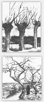Baume Zeichnen Lernen Zeichenkurs Anleitung Tipps