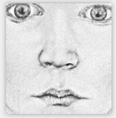 Nase Zeichnenlernen Zeichenkurs Mit Ubungen